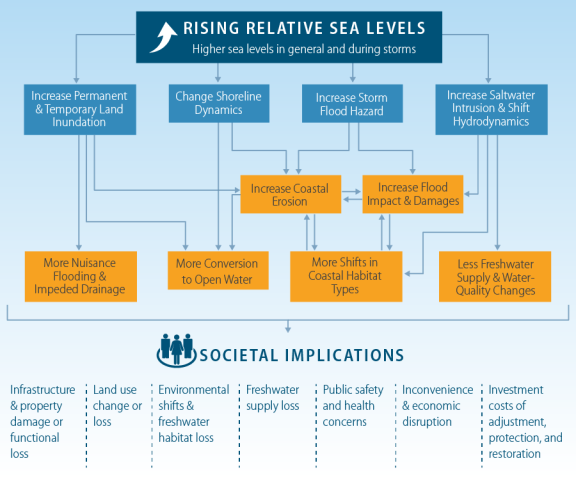 Sea-Level Rise and U S  Coasts: Science and Policy